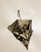 7_umbrella1.jpg