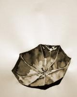 7_umbrella2.jpg