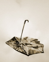 7_umbrella3.jpg